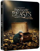Fantastic Beasts And Where To Find Them: Limited Edition (Blu-ray-IT)(SteelBook)