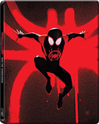 Spider-Man: Into The Spider-Verse: Limited Edition (Blu-ray/DVD)(SteelBook)