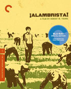 Alambrista!: Criterion Collection (Blu-ray)