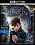 Fantastic Beasts And Where To Find Them (4K Ultra HD/Blu-ray)