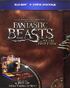 Fantastic Beasts And Where To Find Them: Limited Suitcase Edition (Blu-ray-IT)