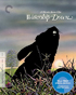 Watership Down: Criterion Collection (Blu-ray)