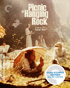 Picnic At Hanging Rock: Criterion Collection (Blu-ray/DVD)