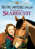 Story Of Seabiscuit: Warner Archive Collection