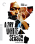 Dry White Season: Criterion Collection (Blu-ray)