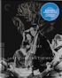 Story Of The Last Chrysanthemum: Criterion Collection (Blu-ray)